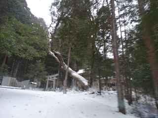 2021雪景色3.JPG