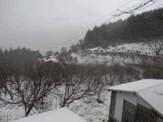 2021雪景色7.JPG