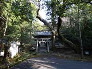 大宮八幡1.JPG