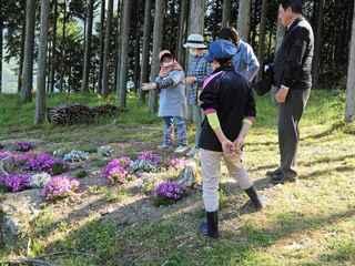 芝桜研修1.JPG