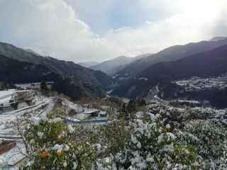 雪の中津3.JPG