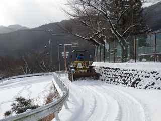 雪の中津6.JPG