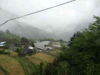 霧の中津 20200503.JPG
