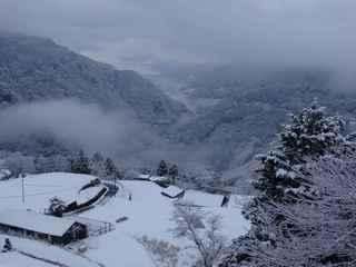 12日の雪景色4.JPG